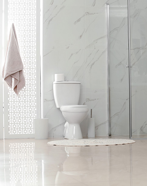 Pose de WC à Saint-Amand-les-Eaux