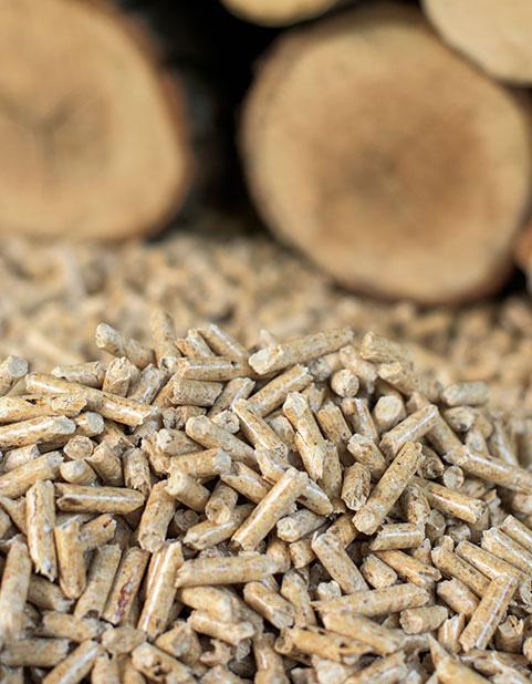 Installation de chaudière bois et granulé à Saint-Amand-les-Eaux
